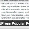 WordPress Popular Postsで人気記事を表示する
